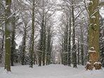 Wörlitz im Winter