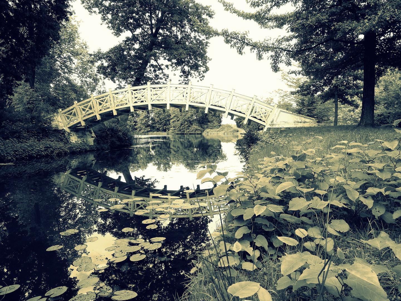 Wörlitzer Garten - Weisse Brücke