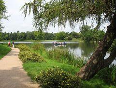 Wörlitzer Park, Amtsfähre