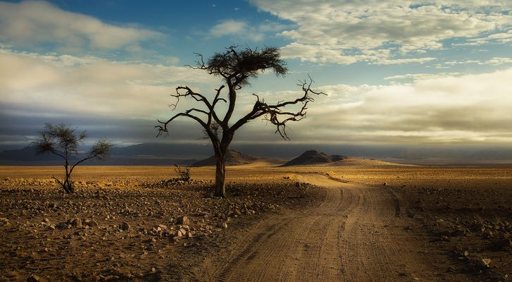 wohin der Weg auch führt ...