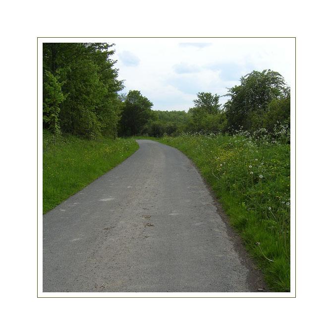 Wohin der Weg uns auch führt ...