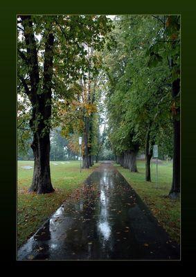 Wohin führt uns der Herbst ?