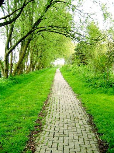 Wohin uns der Weg des Lebens führt....