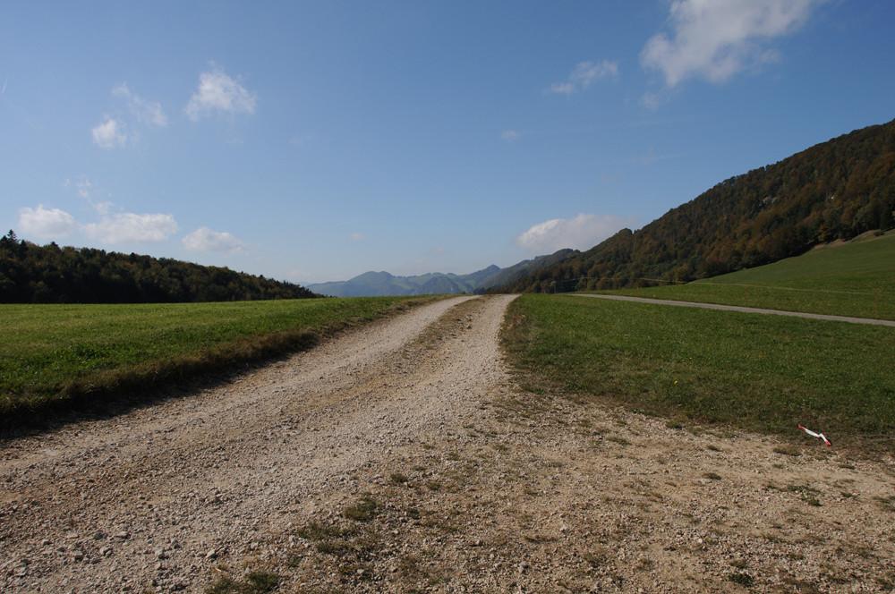 Wohin wird uns dieser Weg führen?