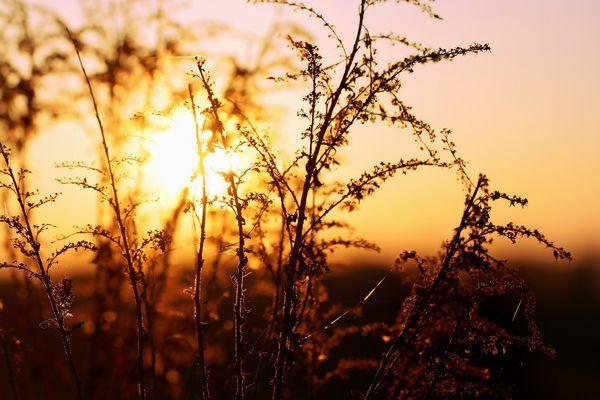 Wohlfühlen mit natürlicher Sonnenenergie