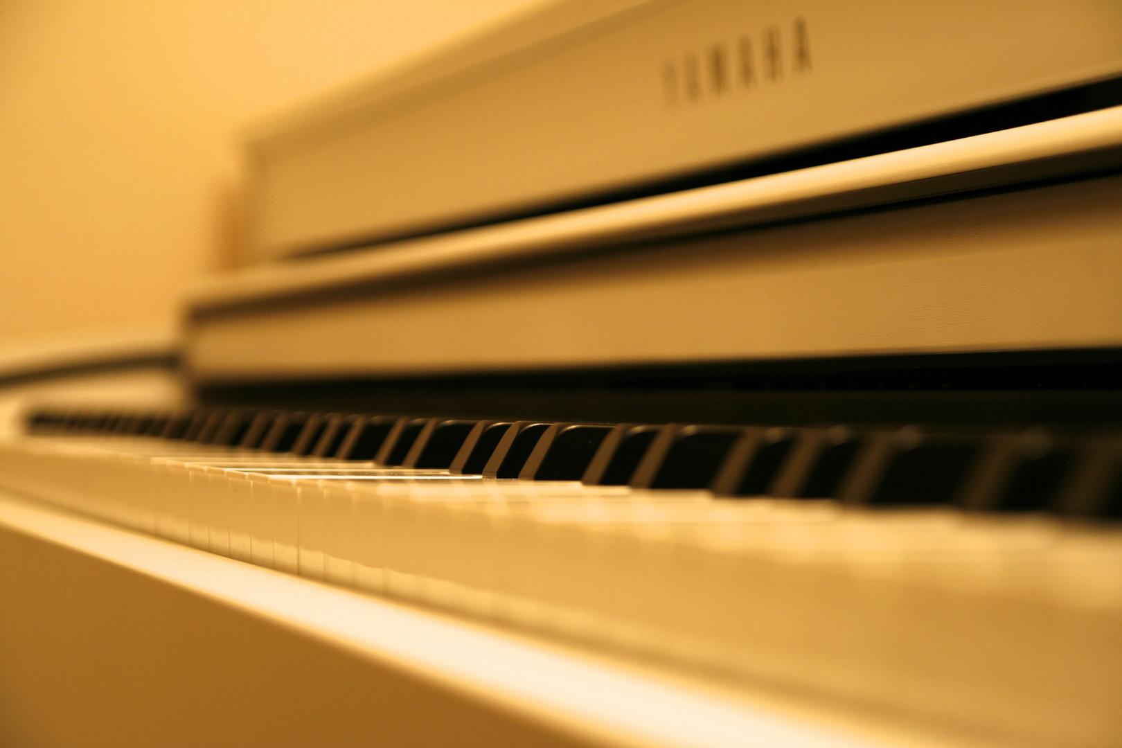 Wohltemperiertes Klavier