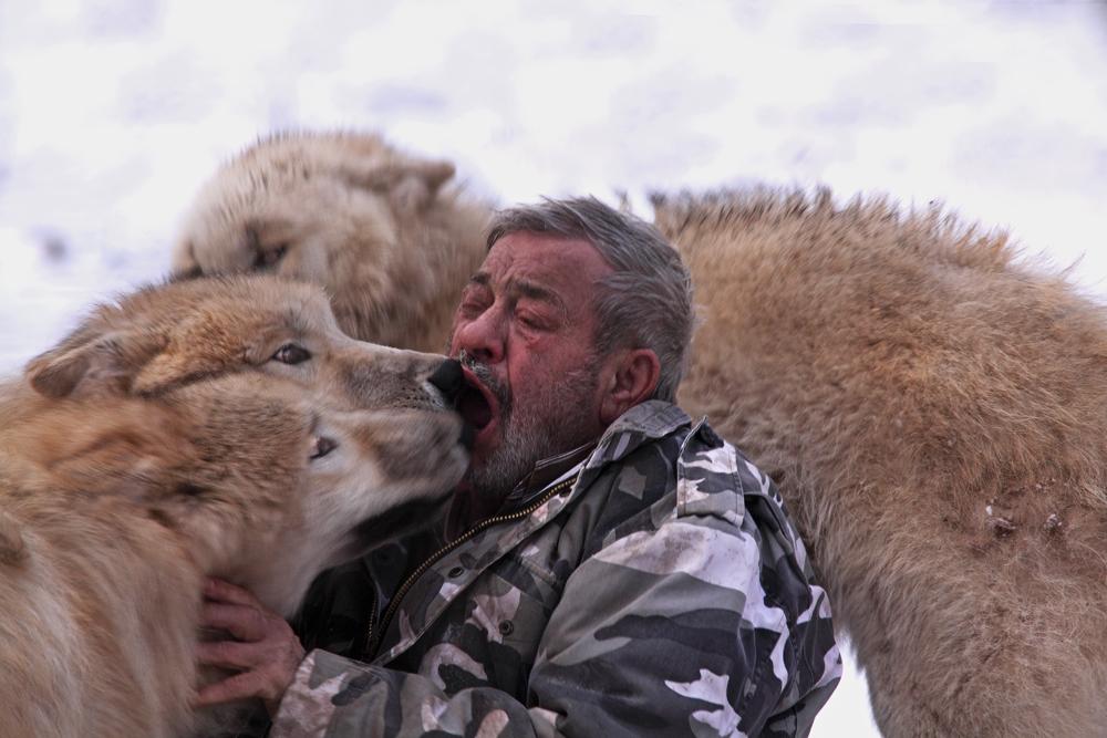 Wolfs-Freund