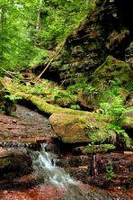 Wolfschlucht - Odenwald Fototour - Naturpark Neckartal-Odenwald