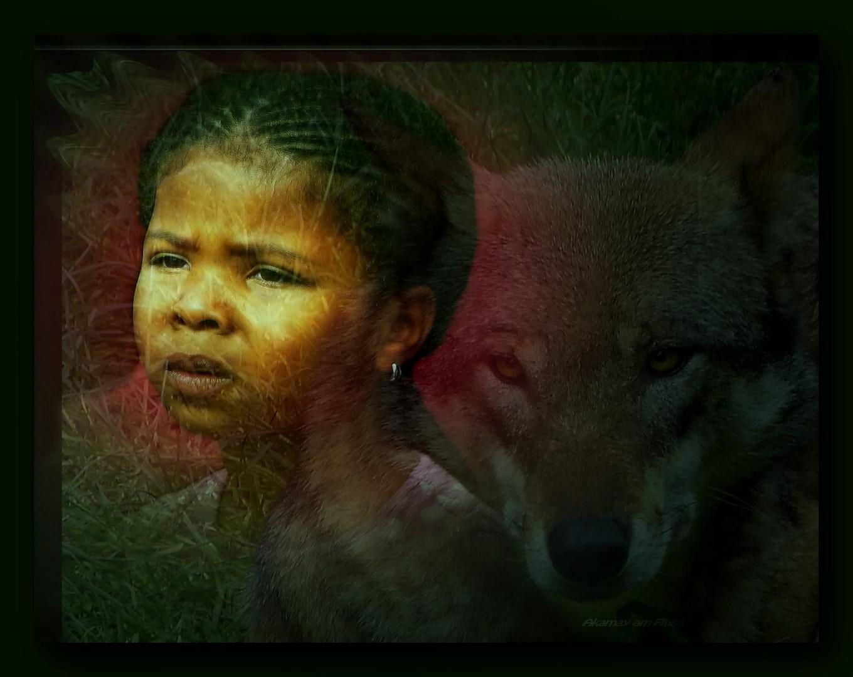 Wolfsfreundschaft - Fantasy