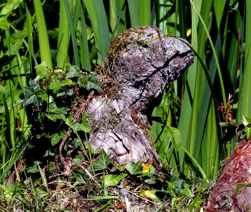 ...Wolfsgarten 2014...05...Holz-Frosch...