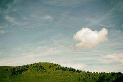 Landschaft und Sehen