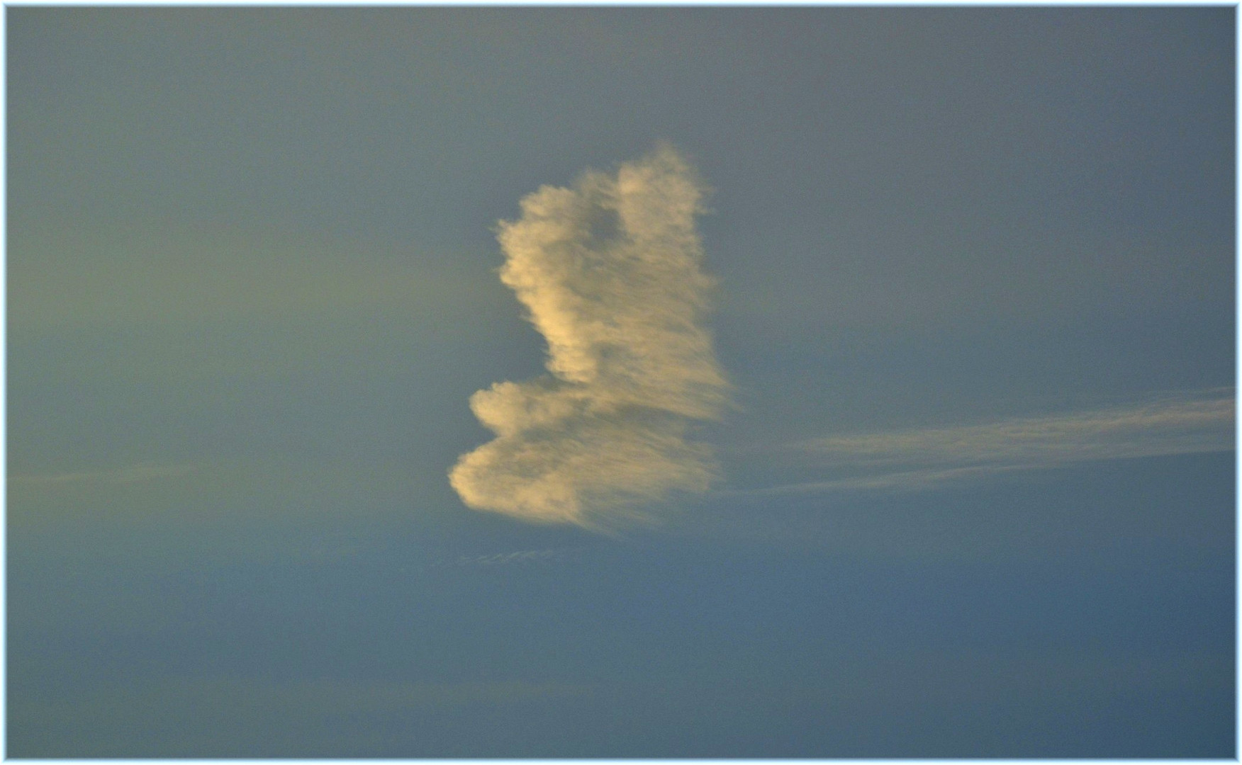 Wolke Engel oder Vogel ( 2)