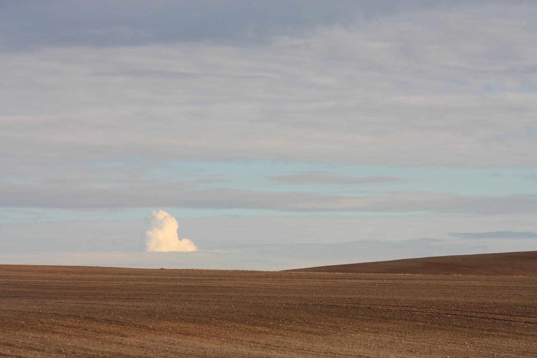 Wolke und Feld