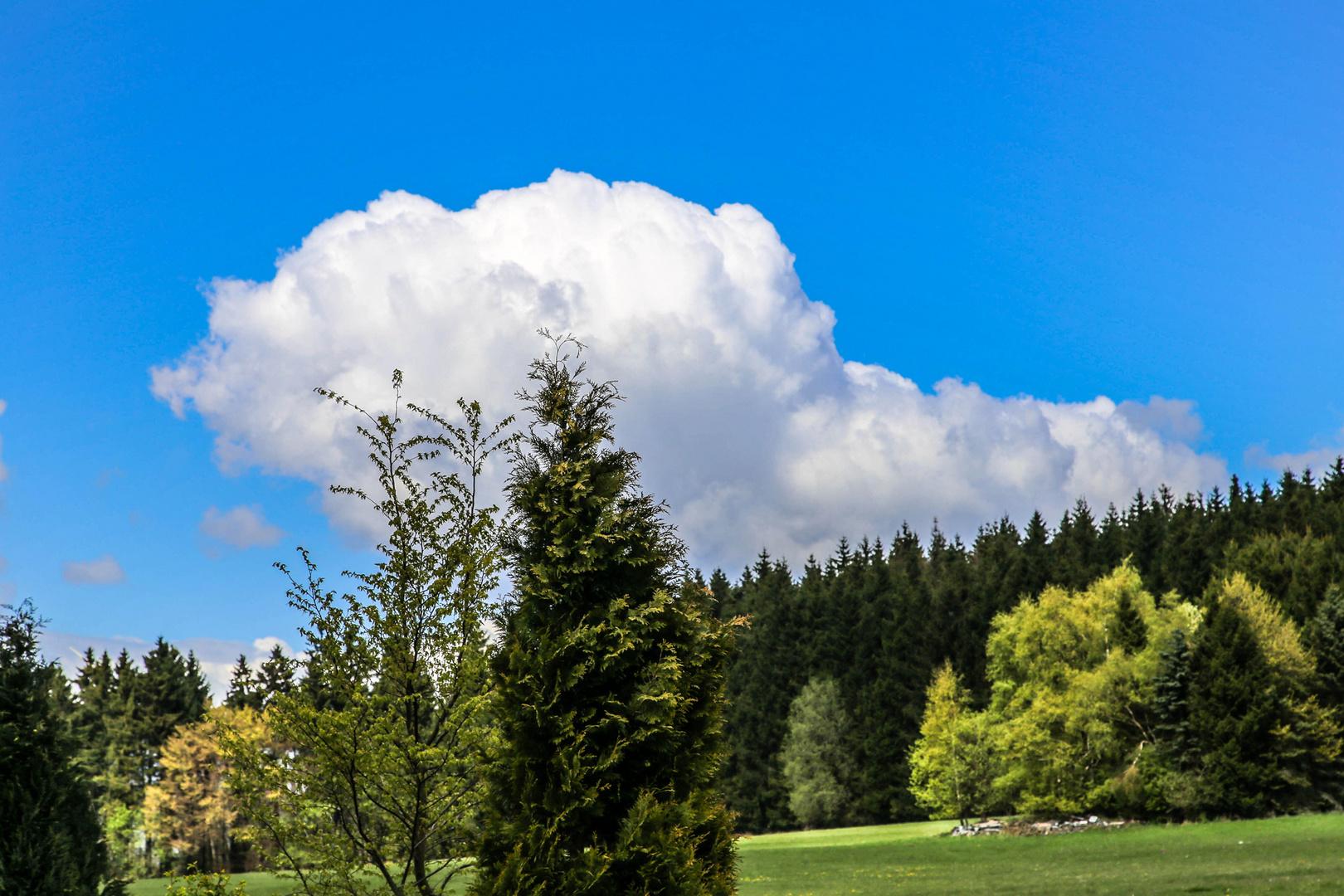 Wolken am Höllkopf