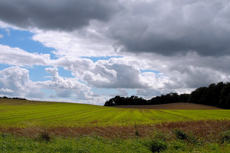 Wolken-Land