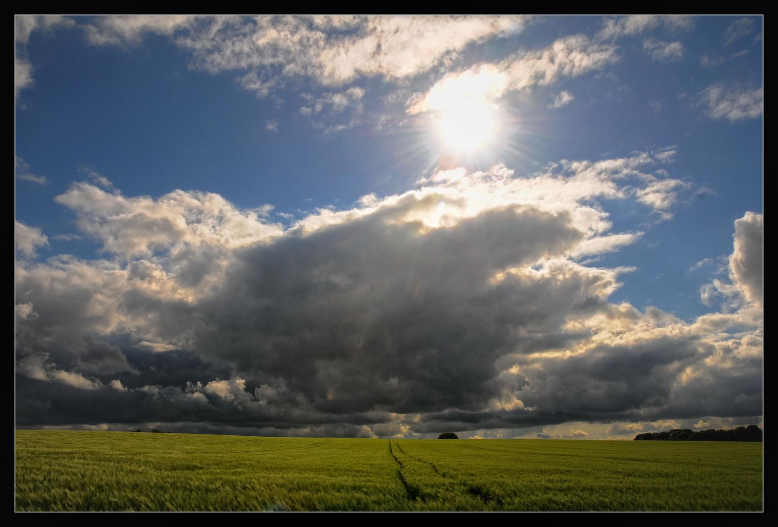 Wolken über dem Feld
