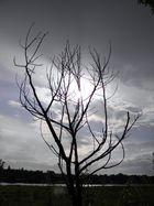Wolken vs. Sonne