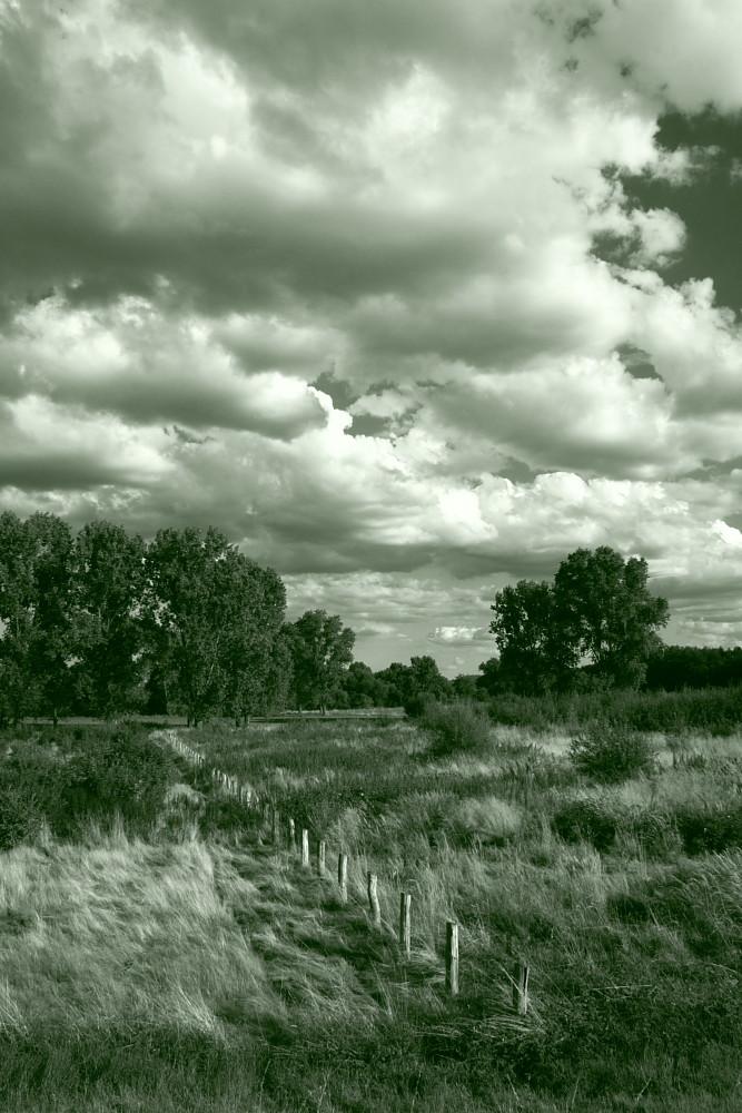 Wolken-Wahn (1)