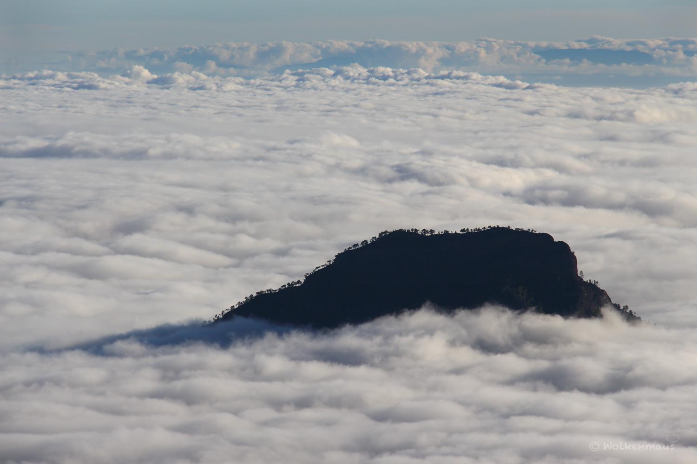 Wolkenbauminsel