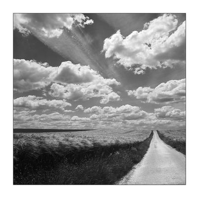 Wolkenflug - Sinsheimer Feld-Impressionen IX