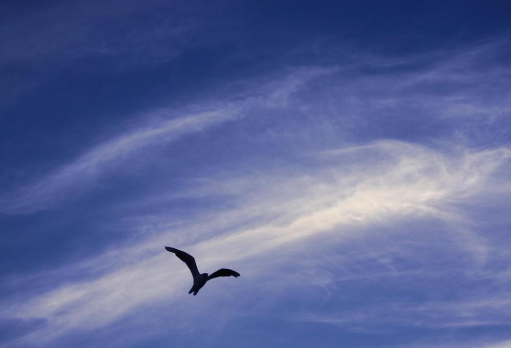Wolkenklar