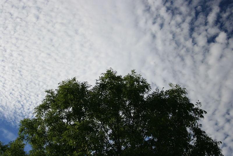 Wolkenkomposition II