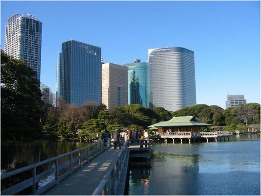 Wolkenkratzer hinter Hamarikyu Park
