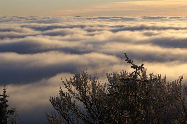 Wolkenmeer im Fichtelgebirge