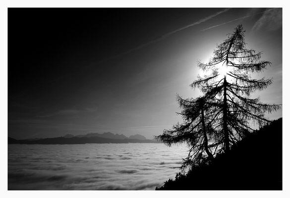 Wolkenmeer im Sonnenuntergang .SW