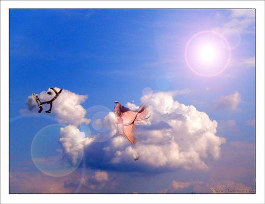 Wolkenpferd