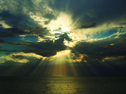 Wolkenpferd -Farbe-