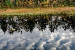 Wolkenspiegel im Haspelmoor
