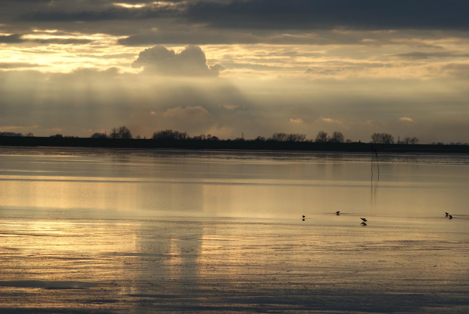Wolkenspiegelung im Watt.
