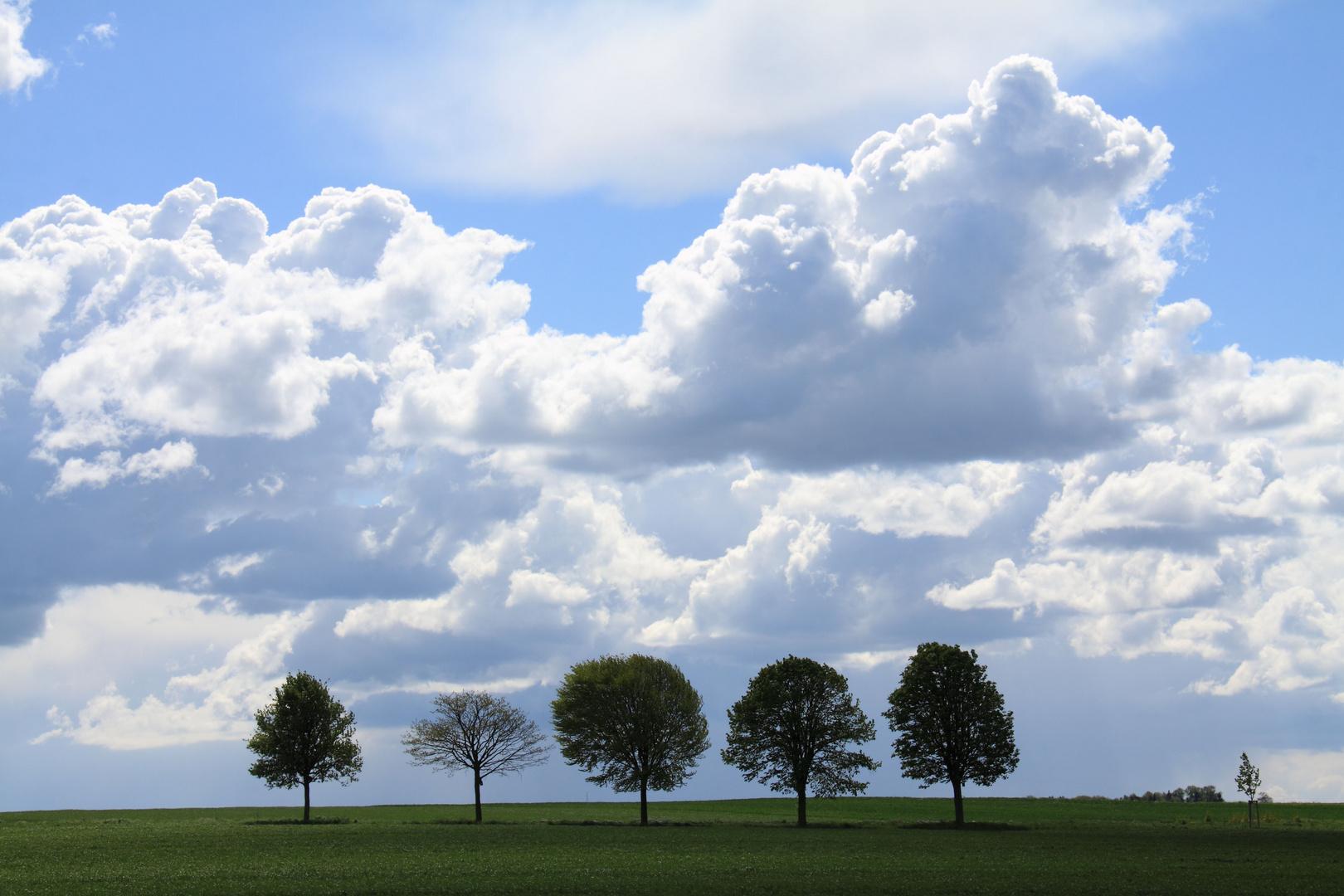 >Wolkenspiele