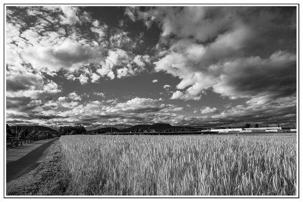 Wolkenstimmung vor dem Gewitter
