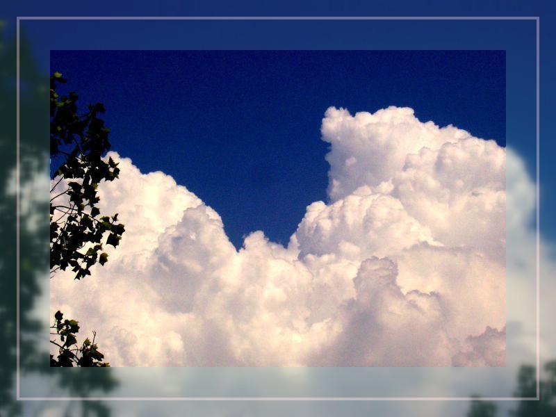 Wolkentraum in Weiss