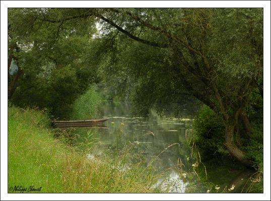 Wolkiger Sommertag am Rheinufer