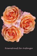 Wollen Rosen kaufen?