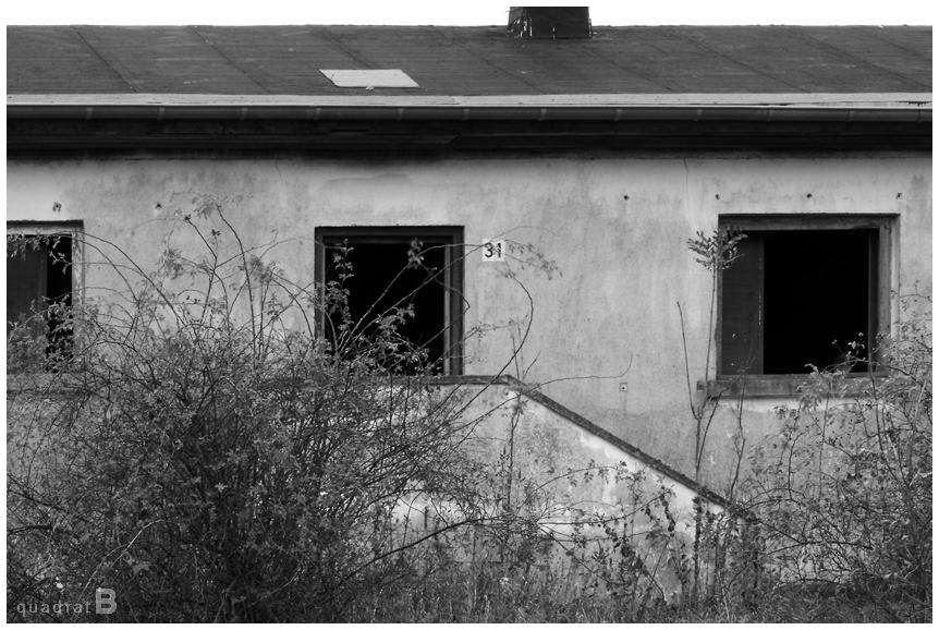 Wollseifen-02