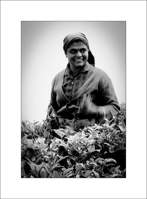 woman of Sri Lanka