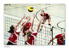 """""""Woman-Power-Block"""" (TSG Backnang, Pokalspiel 28.10.2013)"""