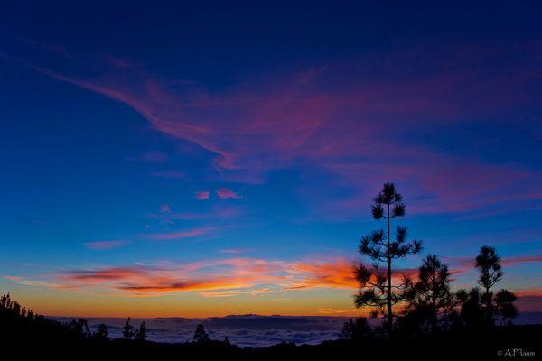 .Wonderful Twilight.