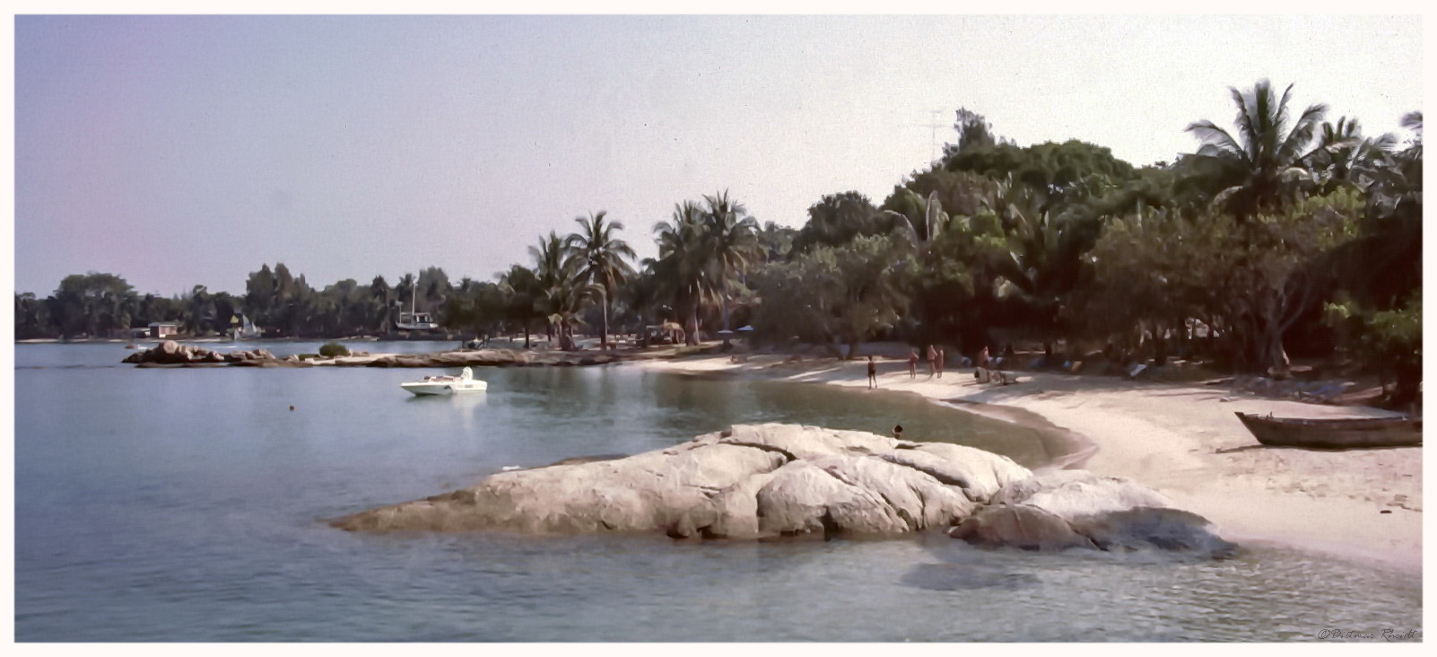 Wong Amat 1984