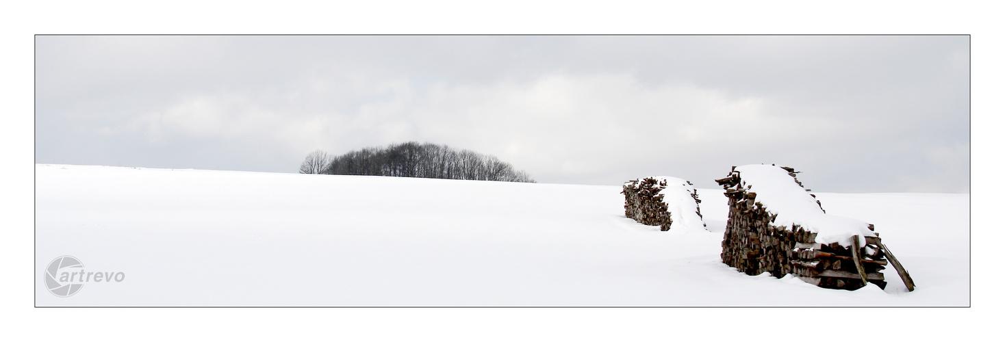 [ Wood ]