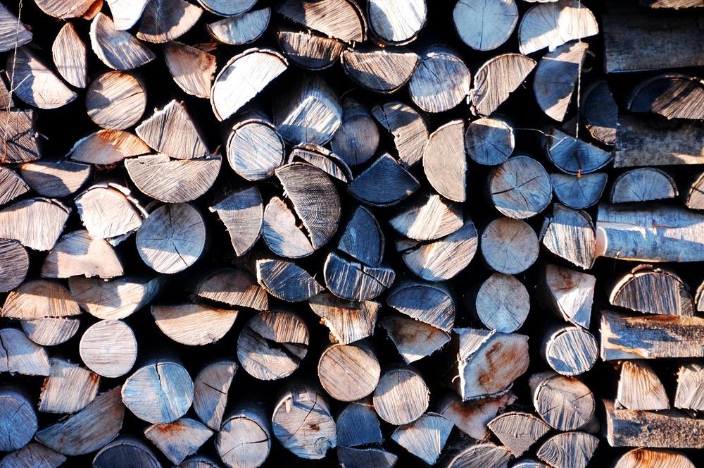 Wood is in the Hood