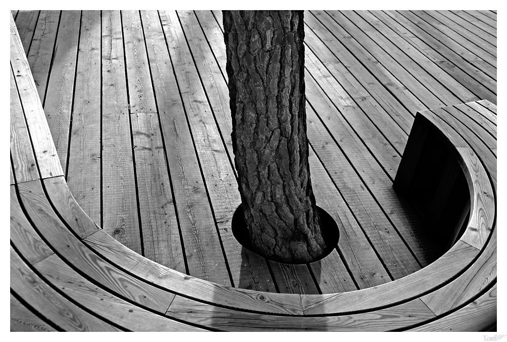woodstruktur