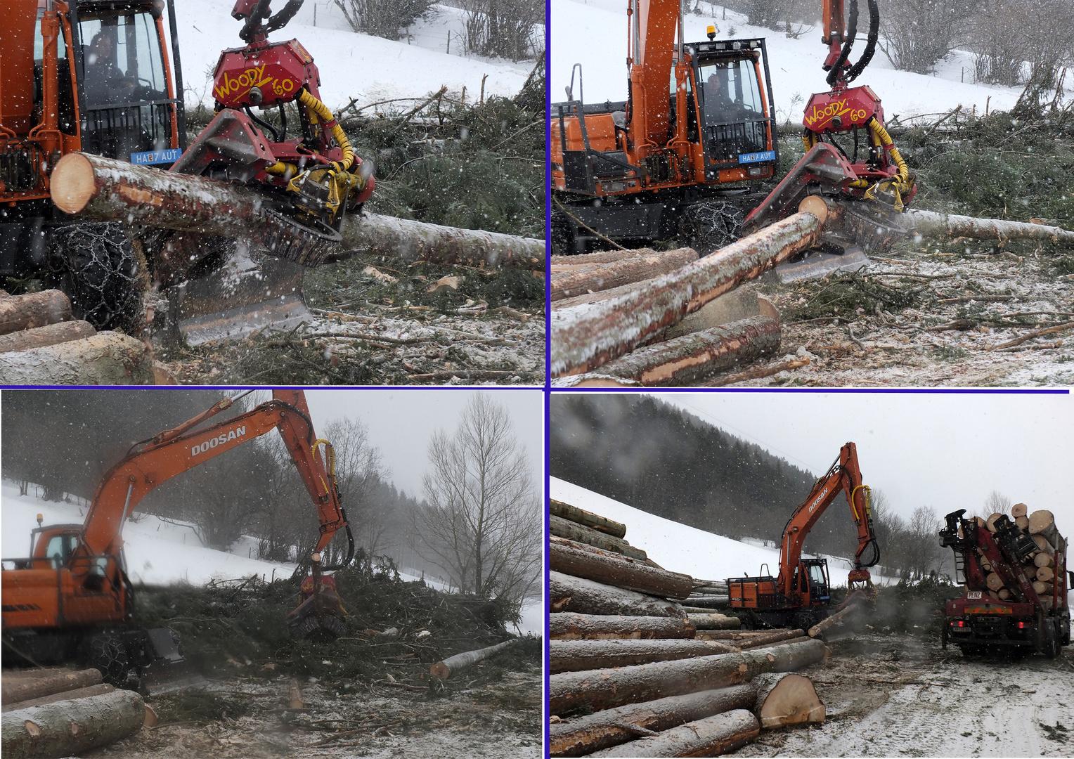 Woody Holzmaschine in Anna Berg
