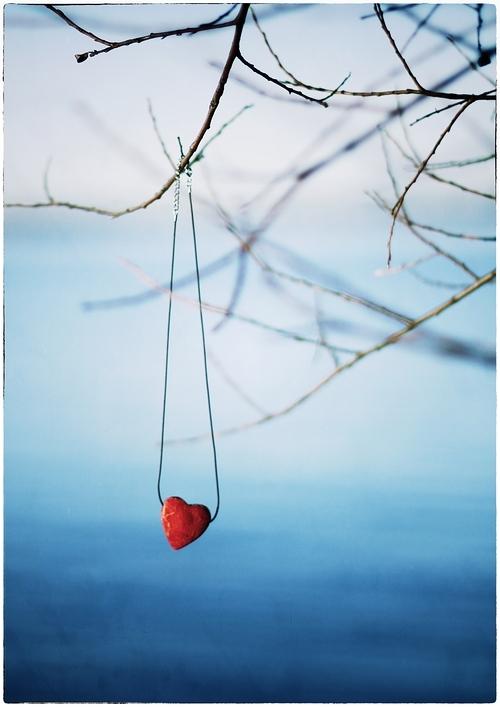 ...woran dein Herz hängt