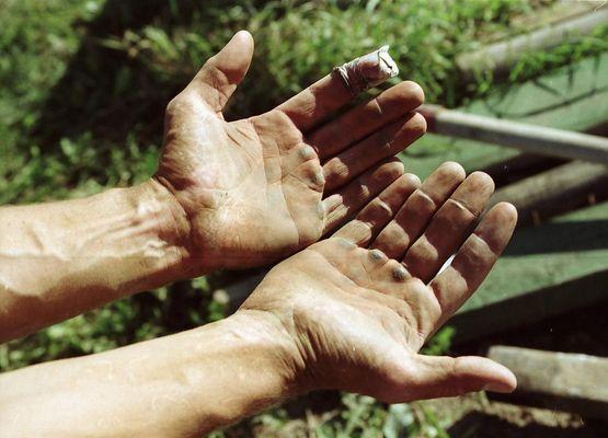workin' hands