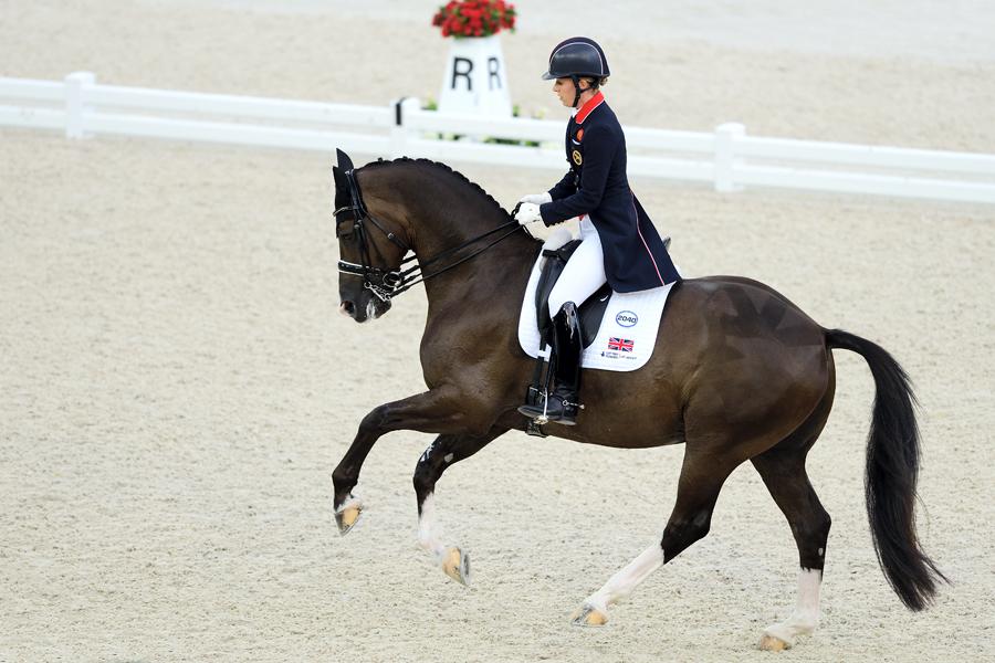 World Equestrian Games Normandie 2014 III